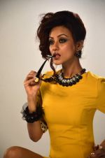 Vedita Pratap Singh photo shoot on 24th May 2012 (16).JPG