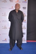 Amit Behl at Indian Telly Awards 2012 in Mumbai on 31st May 2012 (6).JPG