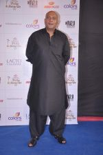 Amit Behl at Indian Telly Awards 2012 in Mumbai on 31st May 2012 (7).JPG