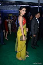 Andrea Jeremiah at IIFA Awards 2012 Red Carpet in Singapore on 9th June 2012  (157).JPG