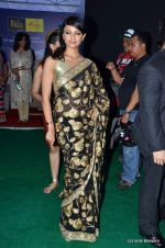 Pooja Kumar at IIFA Awards 2012 Red Carpet in Singapore on 9th June 2012  (146).JPG