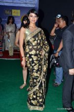 Pooja Kumar at IIFA Awards 2012 Red Carpet in Singapore on 9th June 2012  (148).JPG