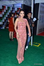 Swara Bhaskar at IIFA Awards 2012 Red Carpet in Singapore on 9th June 2012  (14).JPG