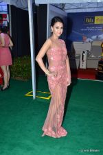 Swara Bhaskar at IIFA Awards 2012 Red Carpet in Singapore on 9th June 2012  (15).JPG