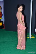 Swara Bhaskar at IIFA Awards 2012 Red Carpet in Singapore on 9th June 2012  (19).JPG