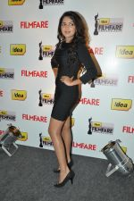 Amla Paul at the Press Conference of 59th dea Filmfare Awards 2011 at Hilton, Chennai on 12th June 2012 (2).JPG