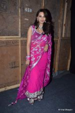 Diana Hayden at Pidilite presents Manish Malhotra, Shaina NC show for CPAA in Mumbai on 1st July 2012  (141).JPG