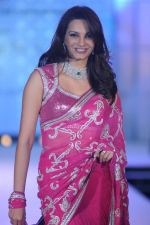 Diana Hayden at Pidilite presents Manish Malhotra, Shaina NC show for CPAA in Mumbai on 1st July 2012 (100).JPG
