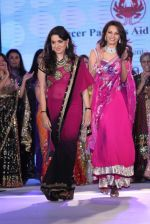 Diana Hayden at Pidilite presents Manish Malhotra, Shaina NC show for CPAA in Mumbai on 1st July 2012 (79).JPG