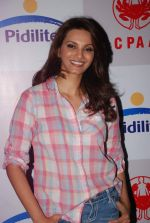 Diana Hayden at Pidilite presents Manish Malhotra, Shaina NC show for CPAA in Mumbai on 1st July 2012 (127).JPG
