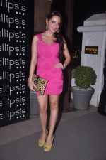 Shazahn Padamsee at Ellipsis launch hosted by Arjun Khanna in Mumbai on 6th July 2012 (149).JPG