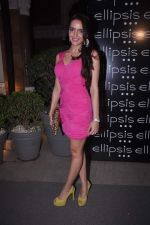 Shazahn Padamsee at Ellipsis launch hosted by Arjun Khanna in Mumbai on 6th July 2012 (151).JPG