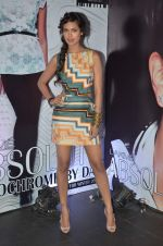 at Lakme Fashion Week 2012 Day 5 post Bash in Grand Hyatt on 7th Aug 2012 (137).JPG