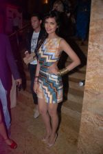 at Lakme Fashion Week 2012 Day 5 post Bash in Grand Hyatt on 7th Aug 2012 (211).JPG