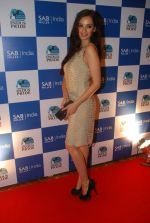 Evelyn Sharma on the red carpet of Indus Pride in ITC Parel on 18th Aug 2012 (134).JPG