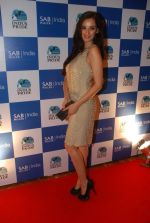 Evelyn Sharma on the red carpet of Indus Pride in ITC Parel on 18th Aug 2012 (135).JPG