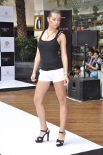 at Aamby Valley Bridal week model auditions in Sahara Star on 25th Aug 2012 (90).JPG