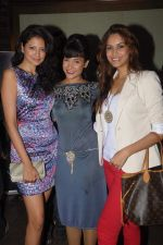 Shonal Rawat at model Mausami Badra_s birthday bash in Vie Lounge on 6th Sept 2012 (40).JPG