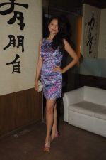 Shonal Rawat at model Mausami Badra_s birthday bash in Vie Lounge on 6th Sept 2012 (43).JPG