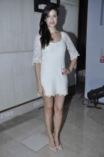 Karishma Kotak at Kingfisher calendar hunt press meet in Mumbai on 20th Sept 2012 (100).JPG