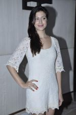 Karishma Kotak at Kingfisher calendar hunt press meet in Mumbai on 20th Sept 2012 (102).JPG
