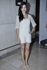 Karishma Kotak at Kingfisher calendar hunt press meet in Mumbai on 20th Sept 2012 (99).JPG