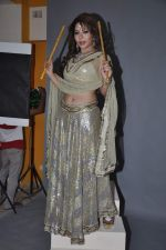 Laila Khan_s dandia photo shoot on 27th Sept 2012  35 (30).JPG