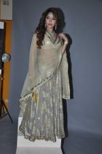 Laila Khan_s dandia photo shoot on 27th Sept 2012  35 (32).JPG