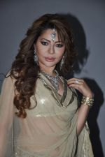 Laila Khan_s dandia photo shoot on 27th Sept 2012  35 (33).JPG