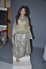 Laila Khan_s dandia photo shoot on 27th Sept 2012  35 (34).JPG