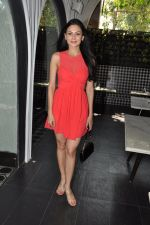 Aanchal Kumar at the Launch of Shatranj Napoli and Polpo Cafe & Bar in Bandra, Mumbai on 30th Sept 2012 (14).JPG