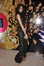 Diana Penty at Elle beauty awards 2012 in Mumbai on 1st Oct 2012 (127).JPG