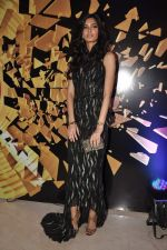 Diana Penty at Elle beauty awards 2012 in Mumbai on 1st Oct 2012 (128).JPG
