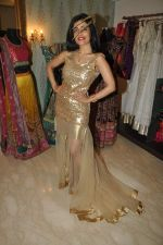 Shibani Kashyap Styled by Amy Billimoria in Mumbai on 2nd Oct 2012,1 (14).JPG