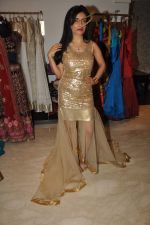 Shibani Kashyap Styled by Amy Billimoria in Mumbai on 2nd Oct 2012,1 (22).JPG