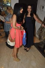 Shibani Kashyap Styled by Amy Billimoria in Mumbai on 2nd Oct 2012,1 (4).JPG
