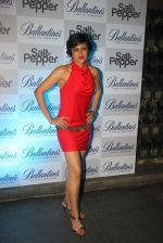 Mandira Bedi at the Ballentine_s Salt N Pepper Preview Party.jpg