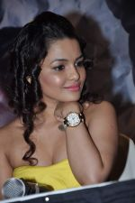 Chitrashi Rawat at Prem Mayee film press meet in Juhu on 4th Oct 2012 (135).JPG