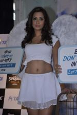 Madhura at PETA SHOOT in mehboob, Mumbai on 19th Oct 2012 (4).JPG