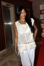 Nina Manuel at Sun Dance Party by Absolut Elyx in Mumbai on 21st Oct 2012 (49).JPG
