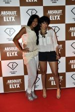 Nina Manuel at Sun Dance Party by Absolut Elyx in Mumbai on 21st Oct 2012 (68).JPG