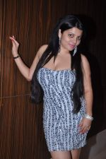 Shraddha Sharma at the Birthday Celebrations of Shraddha Sharma at Novotel, Juhu on 24th Oct 2012 (81).JPG