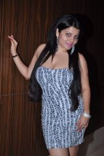 Shraddha Sharma at the Birthday Celebrations of Shraddha Sharma at Novotel, Juhu on 24th Oct 2012 (83).JPG