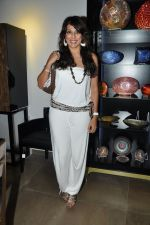 Pooja Bedi at Mondo Casa launch in Mumbai on 25th Oct 2012 (25).JPG
