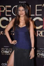 Payal Rohatgi at People_s Choice Awards in Mumbai on 27th Oct 2012 (38).JPG