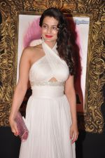Amisha Patel at the Premiere of Jab Tak Hai Jaan in Yashraj Studio, Mumbai on 16th Nov 2012 (131).JPG
