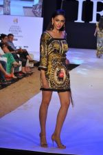 Model walk the ramp for Arjun and Anjalee Show at IRFW 2012 Day 3 in Goa on 30th Nov 2012 (8).JPG