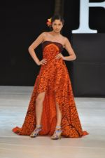 Model walk the ramp for Welspun Show at IRFW 2012 in Goa on 1st Dec 2012 (43).JPG