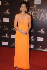Aakanksha Singh at Golden Petal Awards in Mumbai on 3rd Dec 2012 (168).JPG