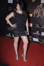 Shraddha Sharma at Golden Petal Awards in Mumbai on 3rd Dec 2012 (92).JPG